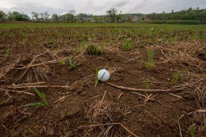 pozemkové úpravy a integrovaný manažment životného prostredia